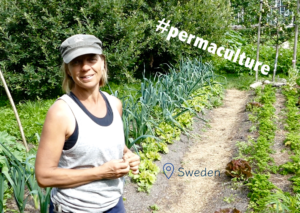Sustainable Solution Permaculture
