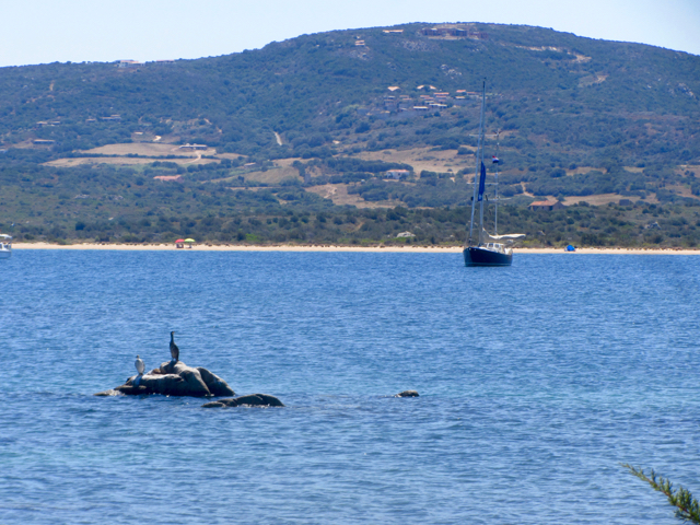 Luci at anchor in Sardinia