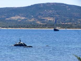 Luci at anchor in Sardinia