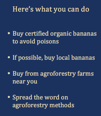 Here's what you can do Banana Logic
