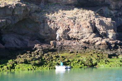 Making shorelines to the rocks in Caleta Horno