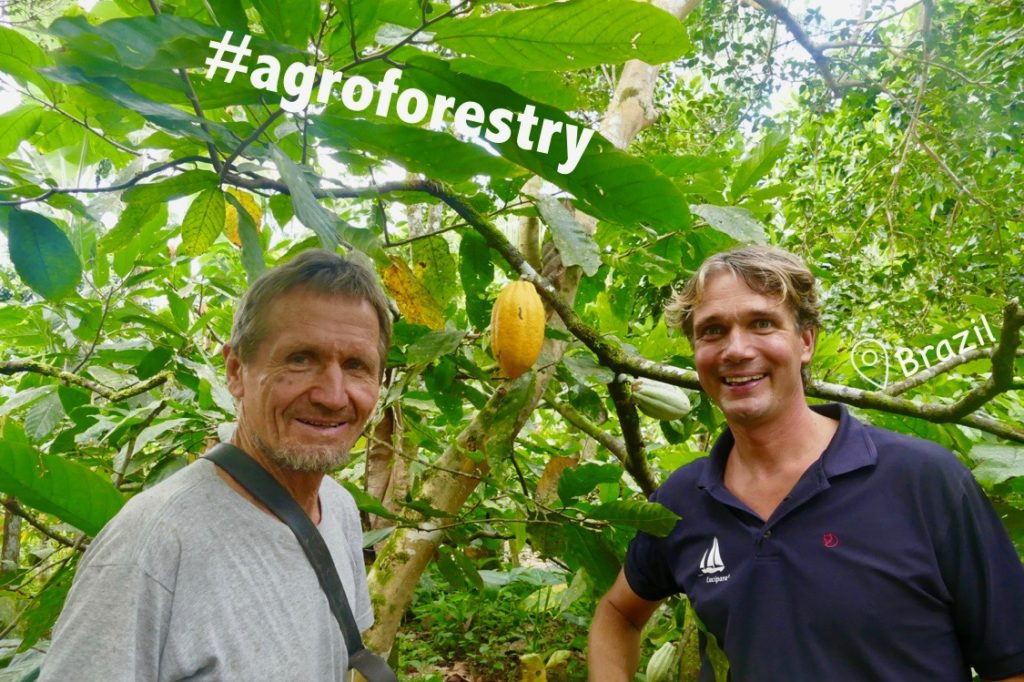 Food Forests (BRA)