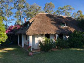 Our cabin at Nangapiré organic farm