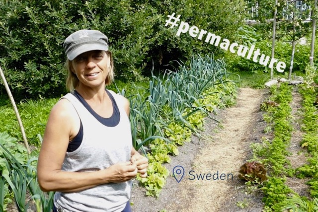 Sustainable Solution 10 - Permaculture