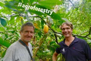Sustainable Solution 35 - Agroforestry