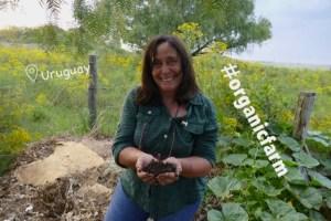 Sustainable Solution 37 - Alda's Organic Neighbourhood Farm