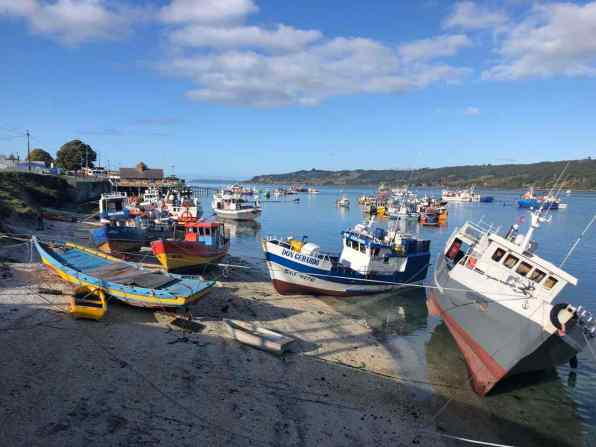 Fishing fleet in Dalcahue