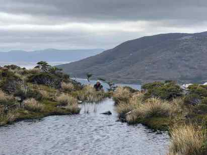 Infinity Pool Patagonian Style