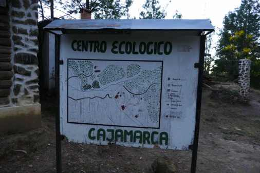 Reforestation in action at Cajamarca