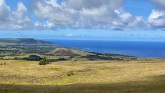 Even today Rapa Nui is largely deforested