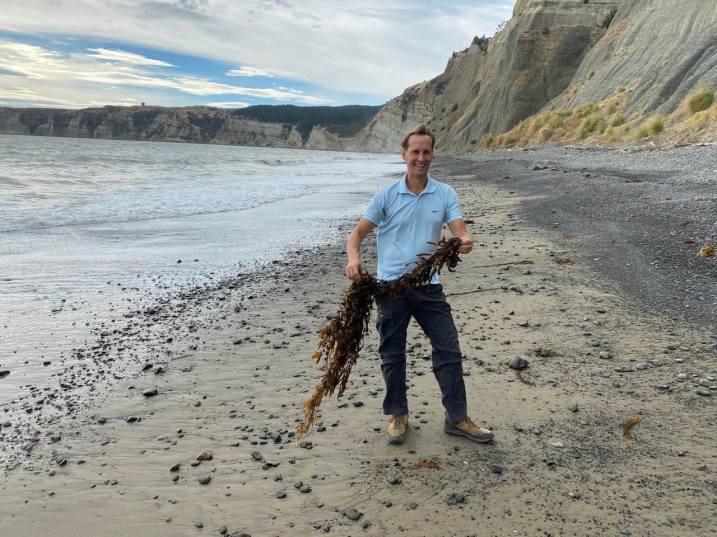 Floris the seaweed collector