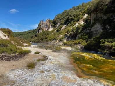 Colorful algae in the warm river