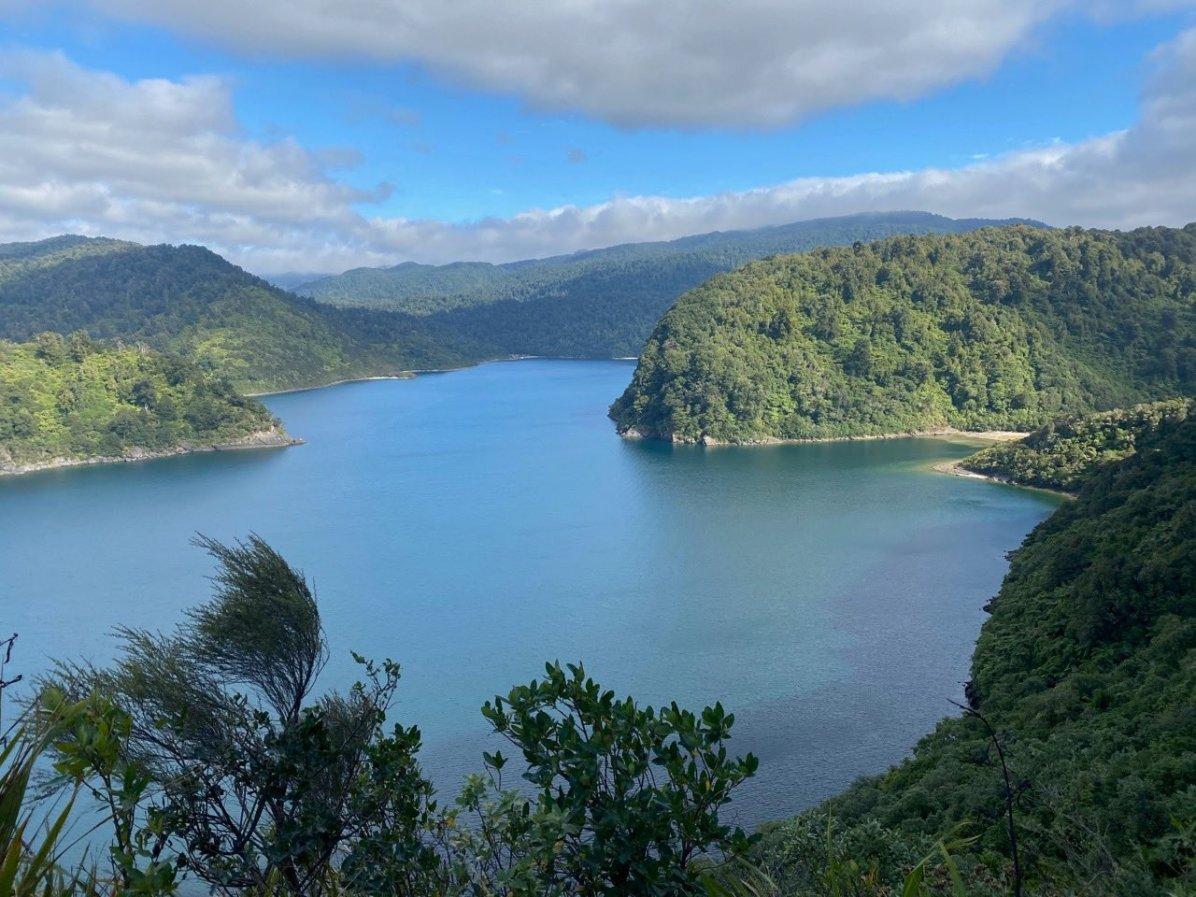 View on Lake Waikaremoana