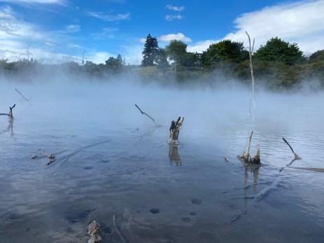 Warm water pool in a Rotorua park