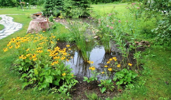 7 natural landscaping ideas