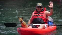 Chihuahua Kayaker
