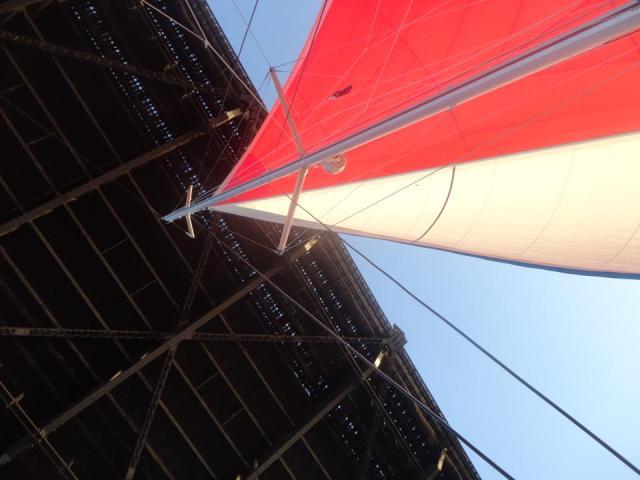 Sailing under the Anzac Bridge