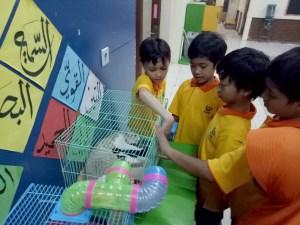 sekolah islam ramah anak