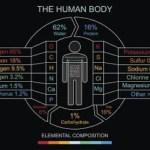 Inilah 10 Unsur-Unsur Kimia Penyusun Tubuh Manusia