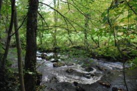 Saint-Martial de Valette commune du Périgord vert