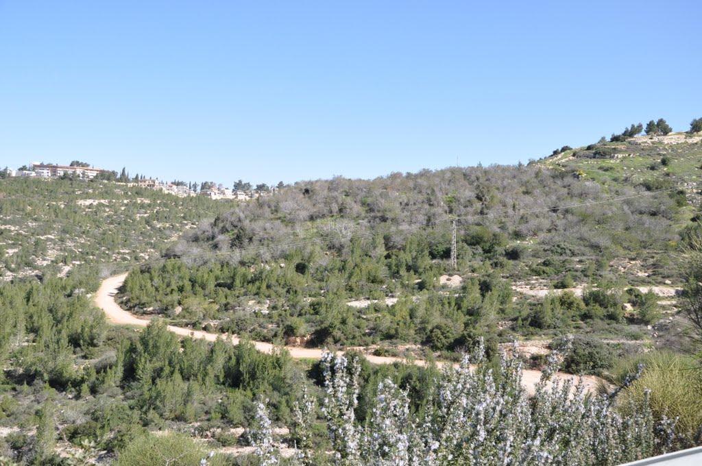A travers les monts de Judée