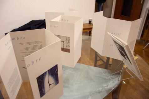 Exposition_Francis_Hungler_Librairie_Le_Neuf (5)