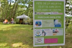 Fête_de_la_Meurthe (28)