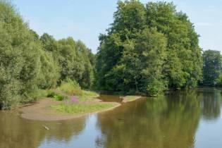 secheresse Meurthe Saint dié (4)