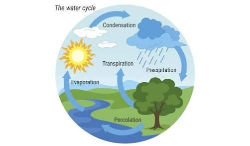 Jenis Jenis Siklus Air Gambar Dan Penjelasan Lengkap