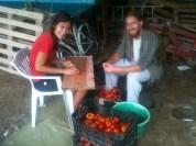 Amandine et David à la préparation du coulis de tomates