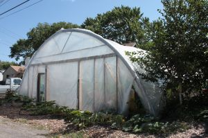 The alley view of the greenhouse at 1243 Hewitt.