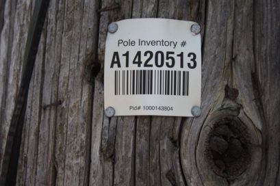 Now we both know that electrical poles have their own, unique ID number.