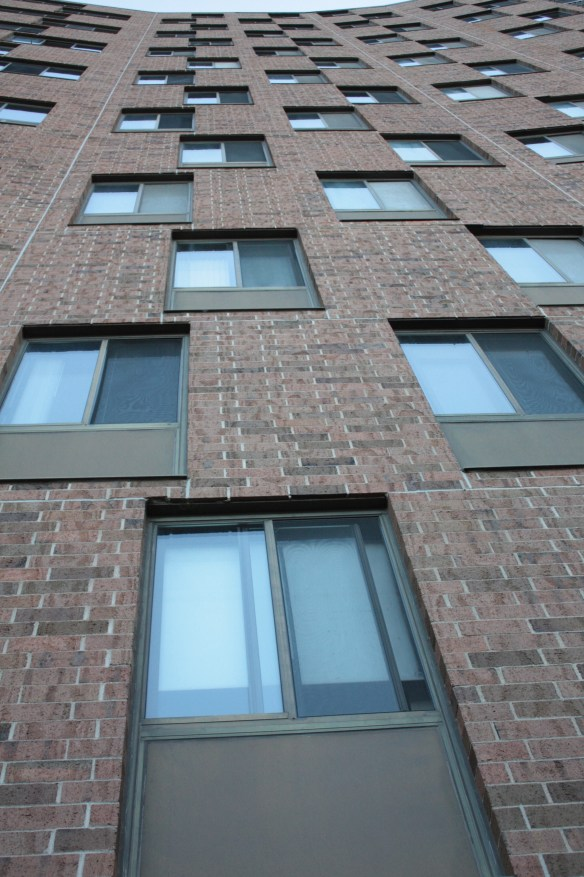 The curve of the building and window placement creates an interesting view from the ground.