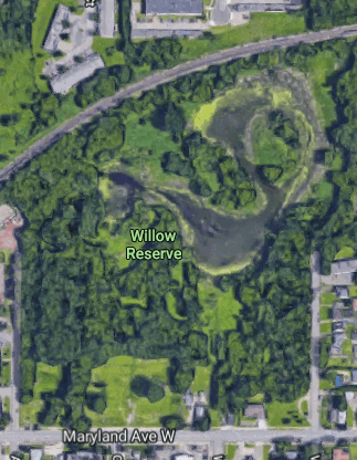 The Willow Reserve property as seen from Google Maps. The open area along Maryland Avenue (bottom) is where the Habitat homes are going to be built. Most of the rest of the Reserve will remain park land but be adapted for easier access.