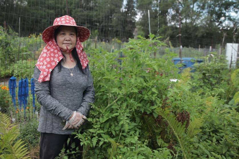 Hlee Xiong paused for a photo among her crops and herbs at the Totem Town (Highwood Hills) Community Garden.