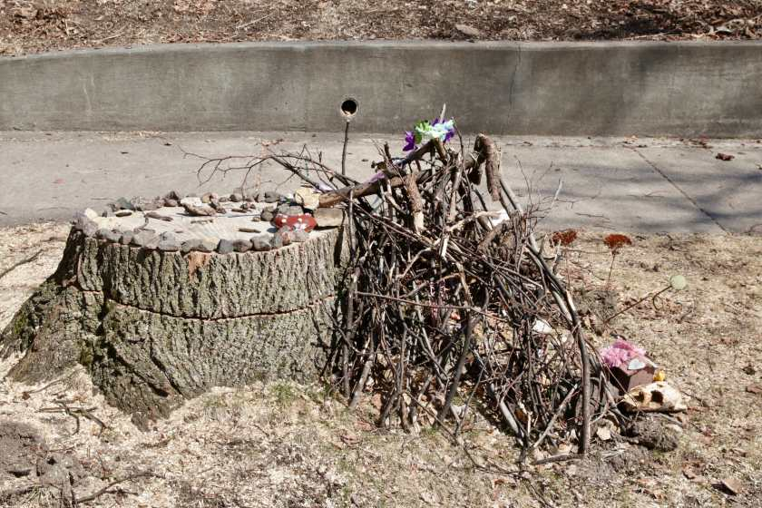 The pile of twigs on the boulevard at Exeter Place and Dayton Avenue.