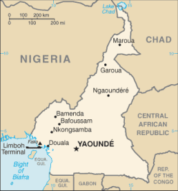 Douala is on the coast of Cameroon.