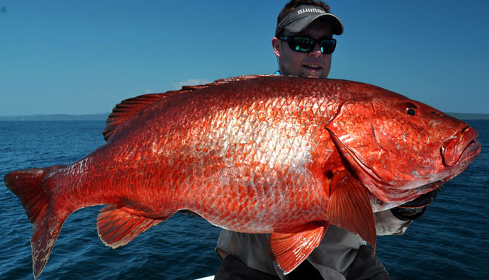 Major expansion of federal red snapper season benefits entire Gulf Coast