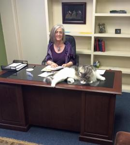 Fursey made himself at home on my office at church, December 2015
