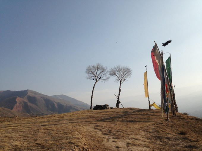 High in the hills above the monastery, a bird takes flight from his perch atop the prayer flags (Photo: Chase Stewart)