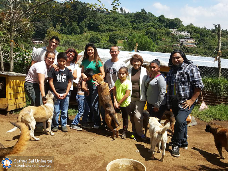 guatemala-service-to-animals-2017-perros9