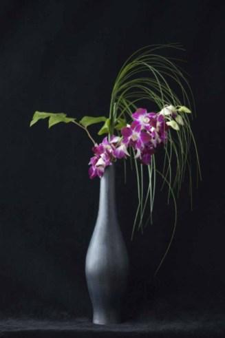 braiden_blossoms-Flower_16FEB_2011
