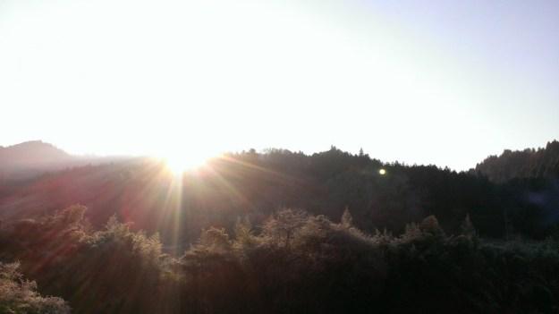 今朝自宅から見えたお日様(日の出ではないのですが…笑)