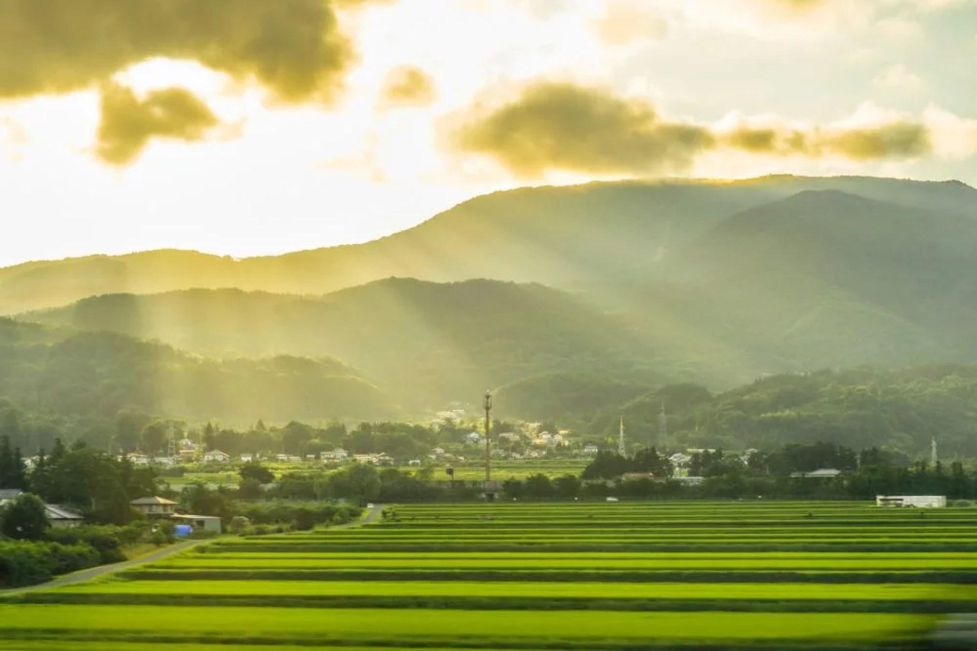 山形の日本酒ランキング