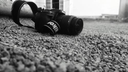 pexels-photo-238534