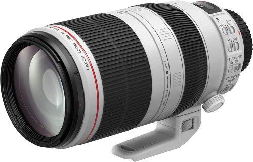 キヤノン(Canon) EF100-400mm F4.5-5.6L IS II USM