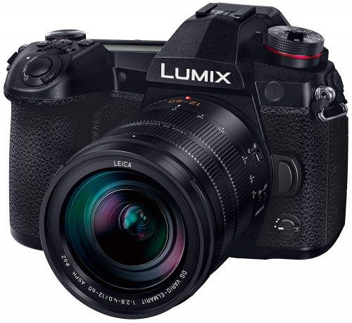 パナソニック(Panasonic) LUMIX G9L 標準ズームライカDGレンズキット