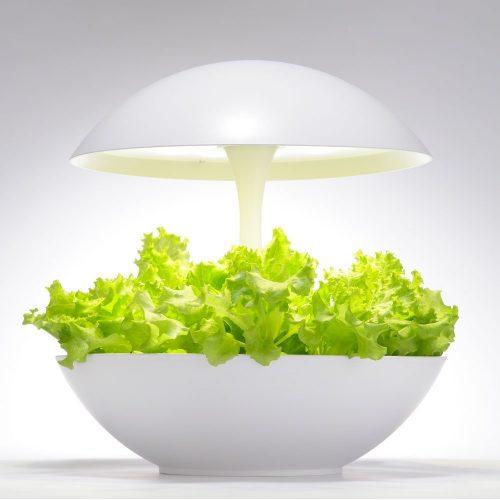 灯菜(Akarina) LED水耕栽培キット Akarina01