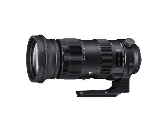 シグマ(SIGMA) 60-600mm F4.5-6.3 DG OS HSM | Sports