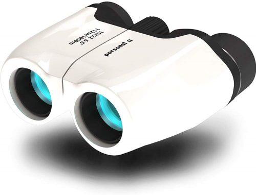 パーソナルアルファ(personal-α) 双眼鏡 10倍10×22 6.5°